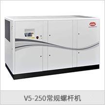 V5-250常规螺杆机